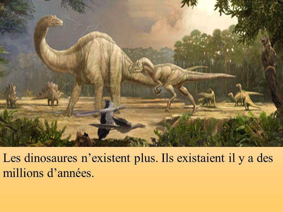 Les dinosaures n'existent plus