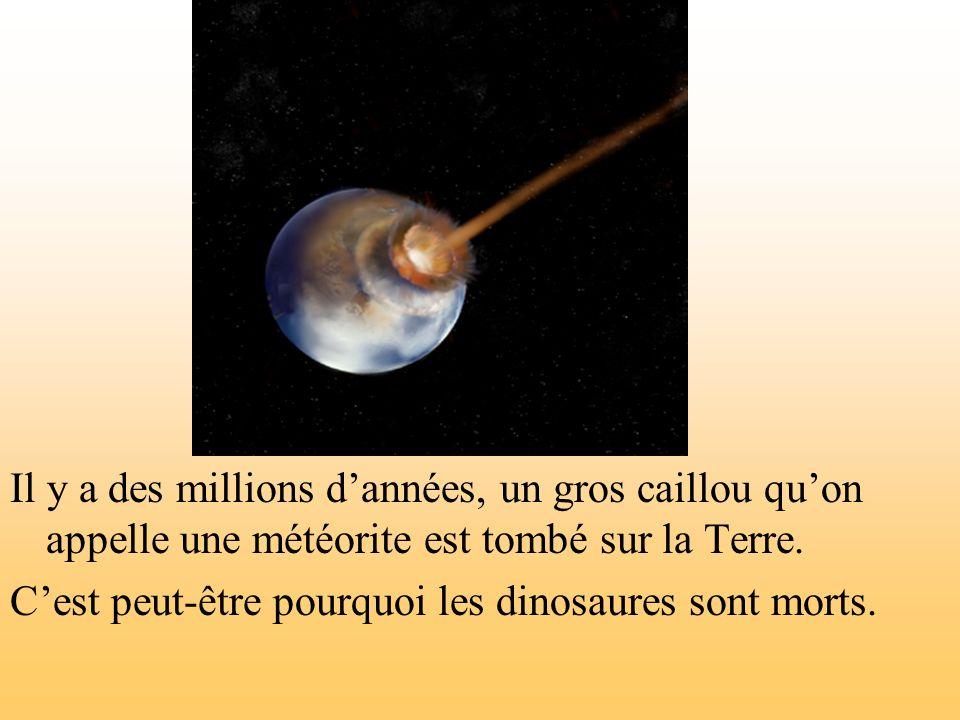 Il y a des millions d'années, un gros caillou qu'on appelle une météorite est tombé sur la Terre.