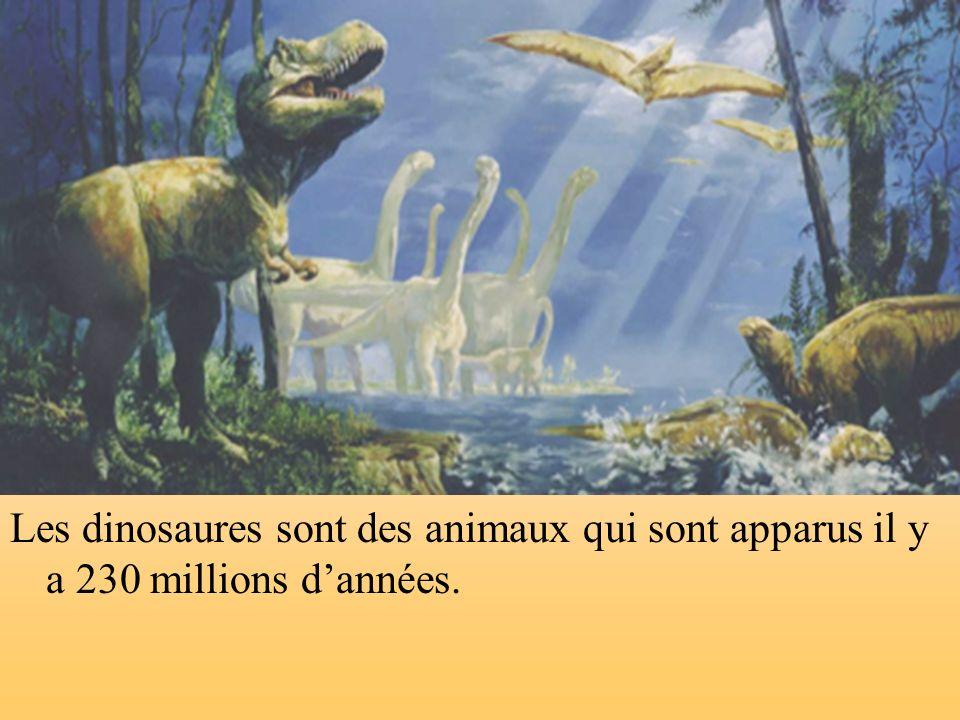 Les dinosaures sont des animaux qui sont apparus il y a 230 millions d'années.