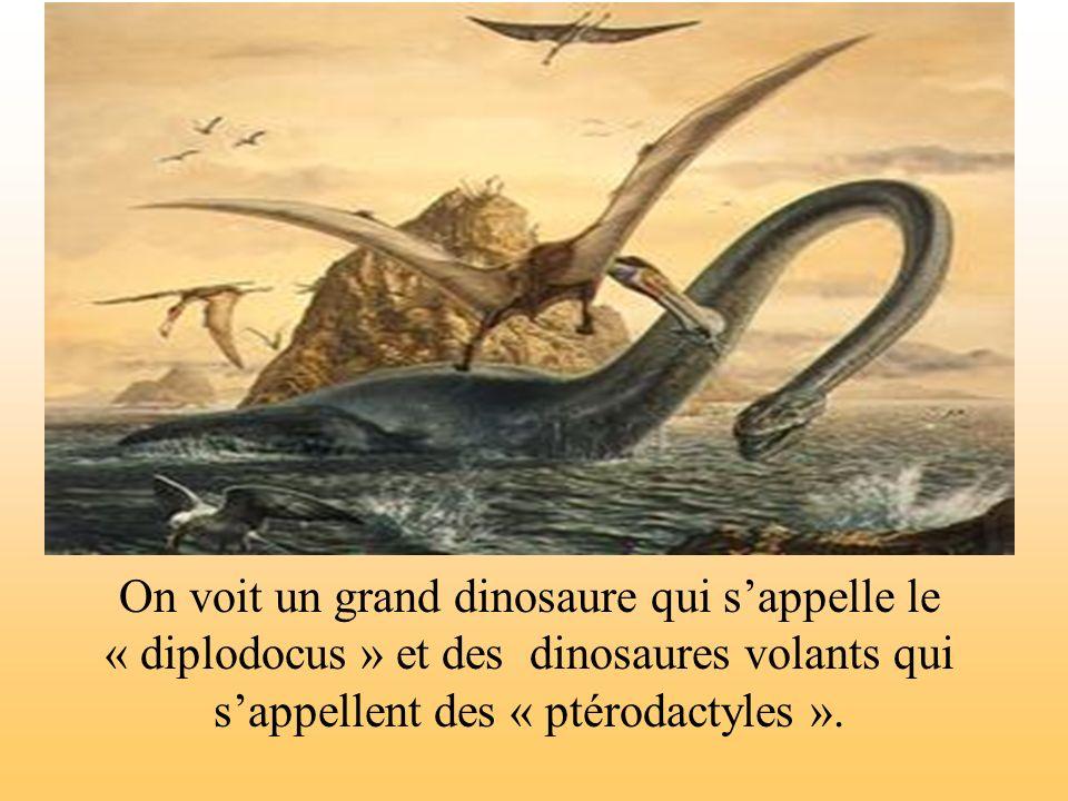 On voit un grand dinosaure qui s'appelle le « diplodocus » et des dinosaures volants qui s'appellent des « ptérodactyles ».