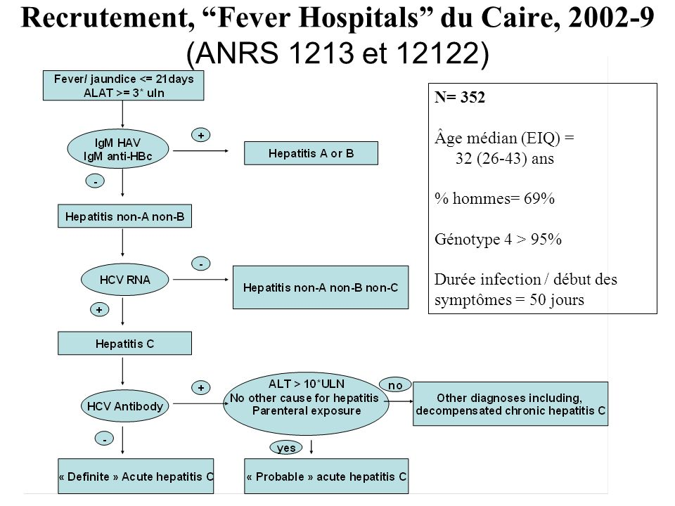 Recrutement, Fever Hospitals du Caire, 2002-9 (ANRS 1213 et 12122)