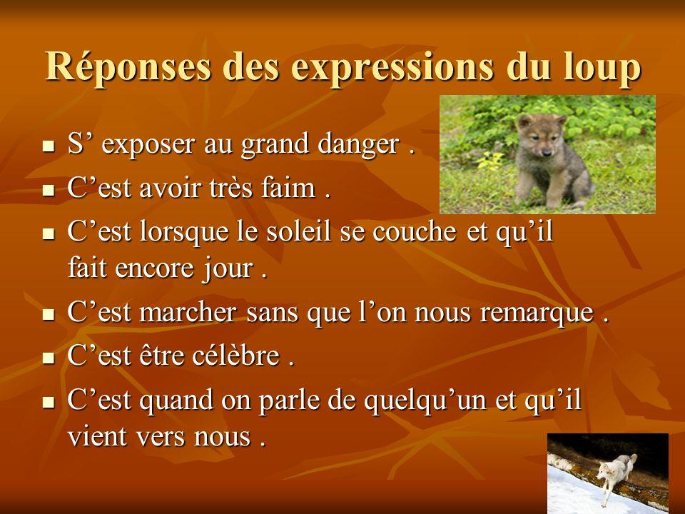 Réponses des expressions du loup