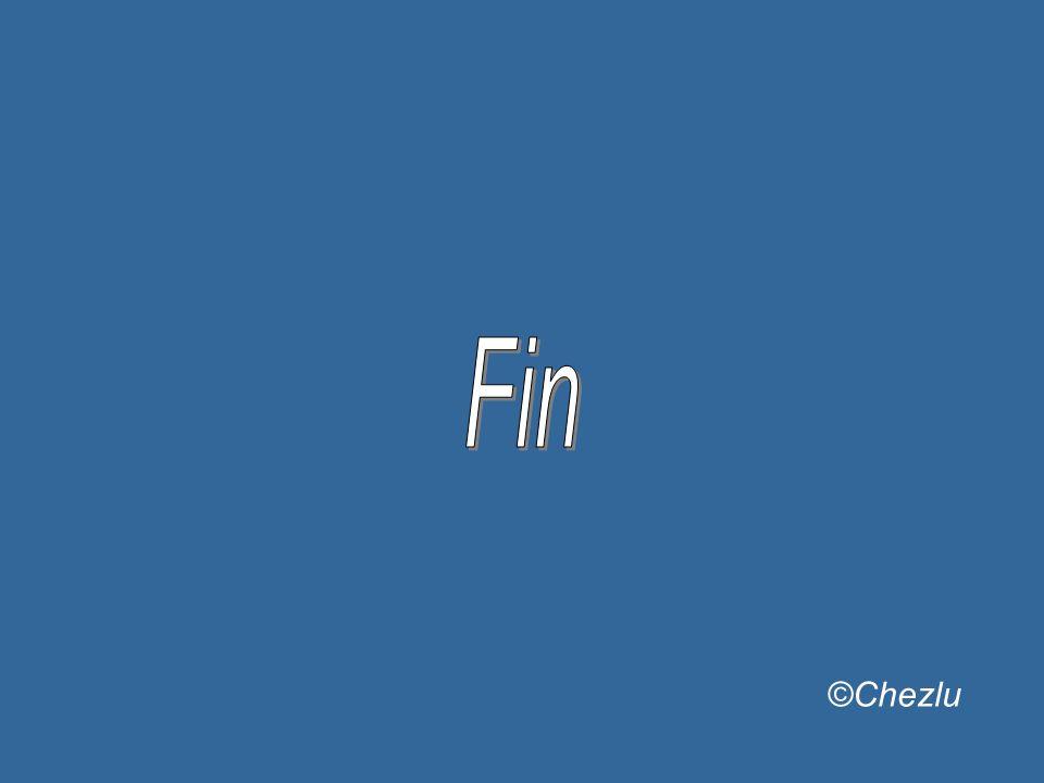 Fin ©Chezlu