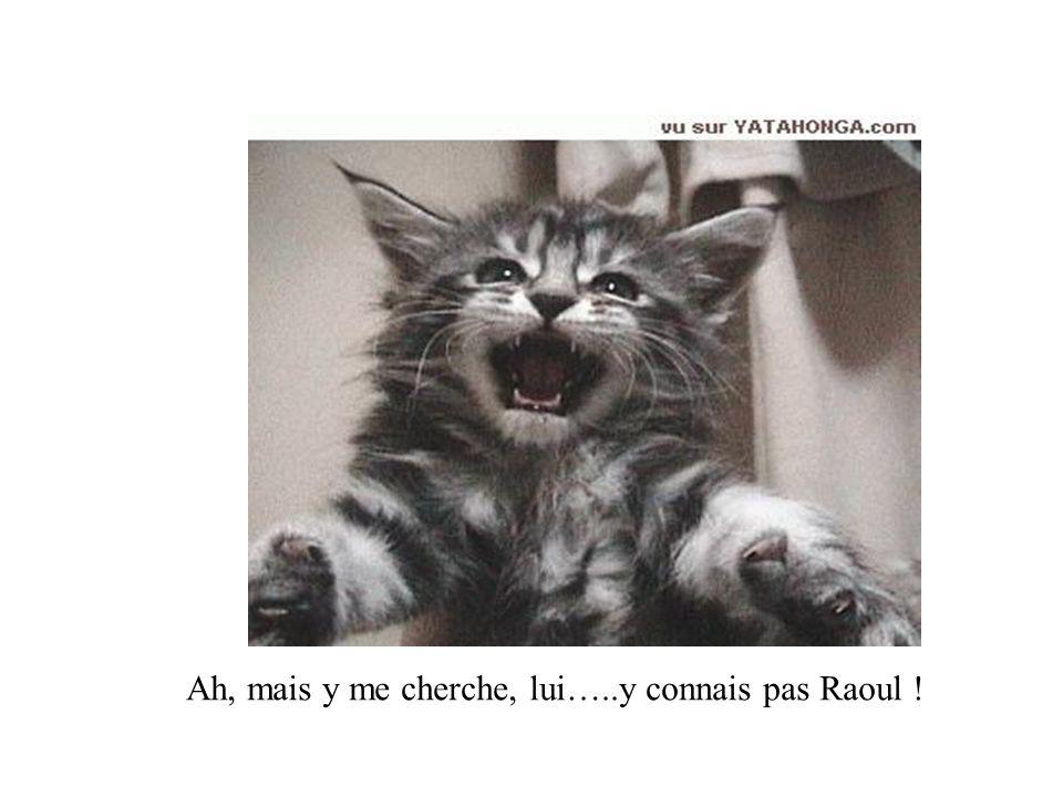 Ah, mais y me cherche, lui…..y connais pas Raoul !