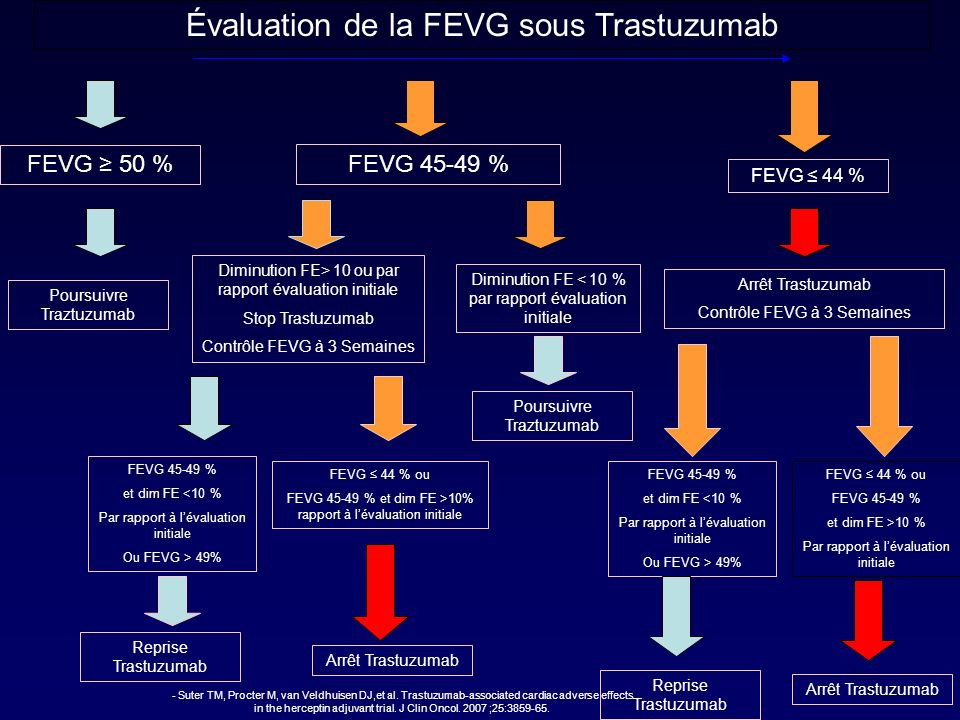 Évaluation de la FEVG sous Trastuzumab