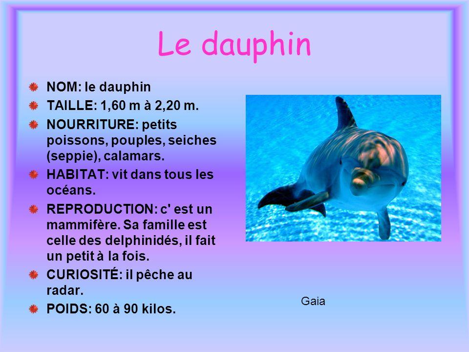 Le dauphin NOM: le dauphin TAILLE: 1,60 m à 2,20 m.