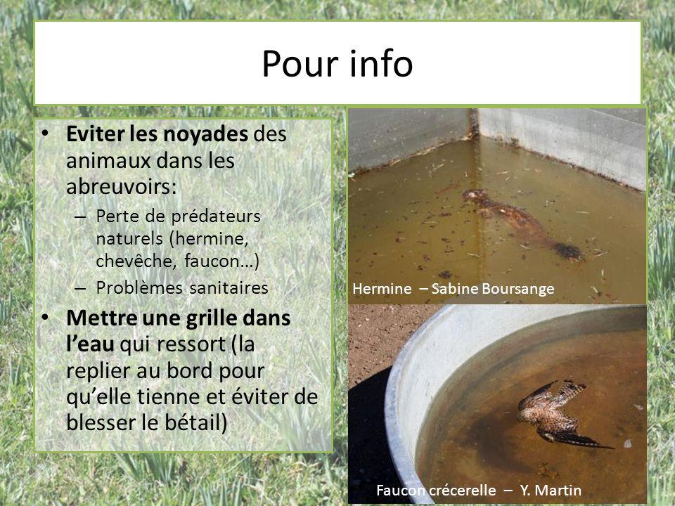 Pour info Eviter les noyades des animaux dans les abreuvoirs: