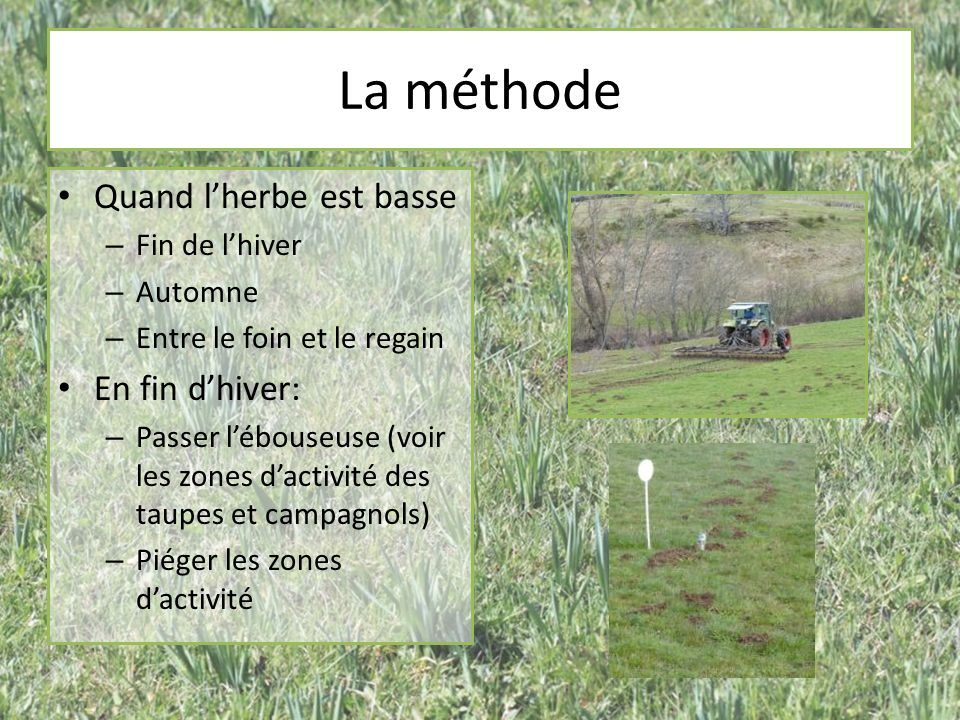 La méthode Quand l'herbe est basse En fin d'hiver: Fin de l'hiver