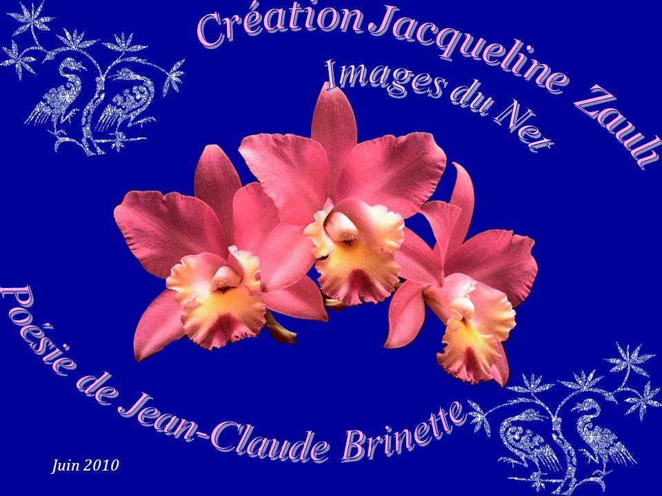 Poésie de Jean-Claude Brinette