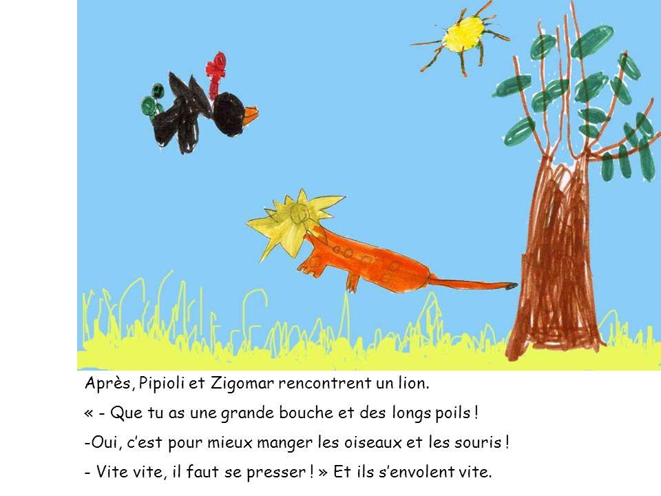 Après, Pipioli et Zigomar rencontrent un lion.