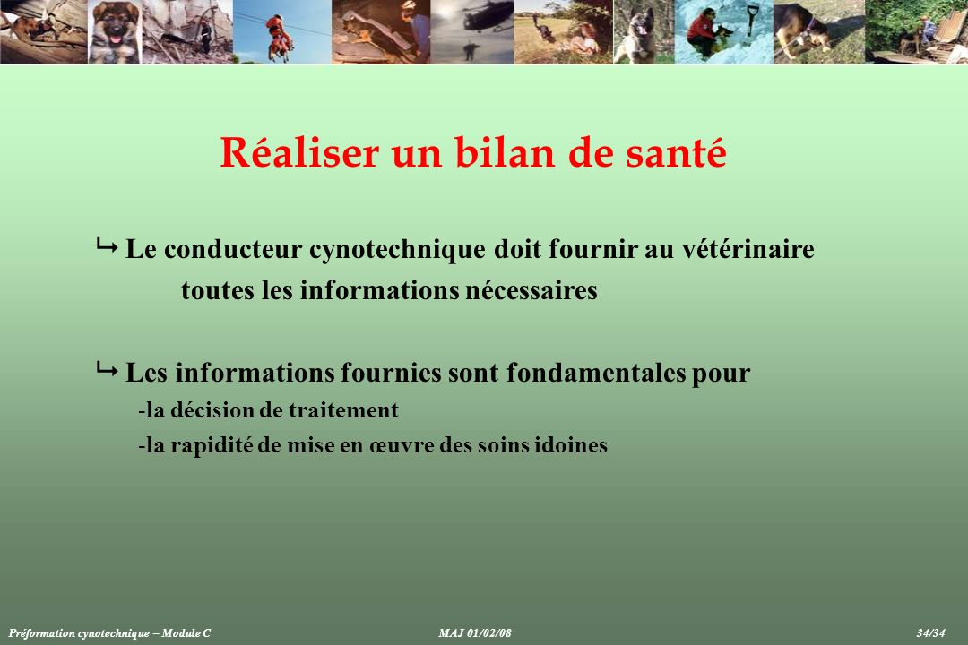 crit res d valuation de bonne sant du chien ppt video online t l charger. Black Bedroom Furniture Sets. Home Design Ideas