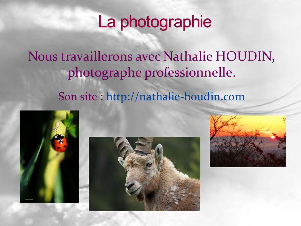 La photographie Nous travaillerons avec Nathalie HOUDIN, photographe professionnelle.