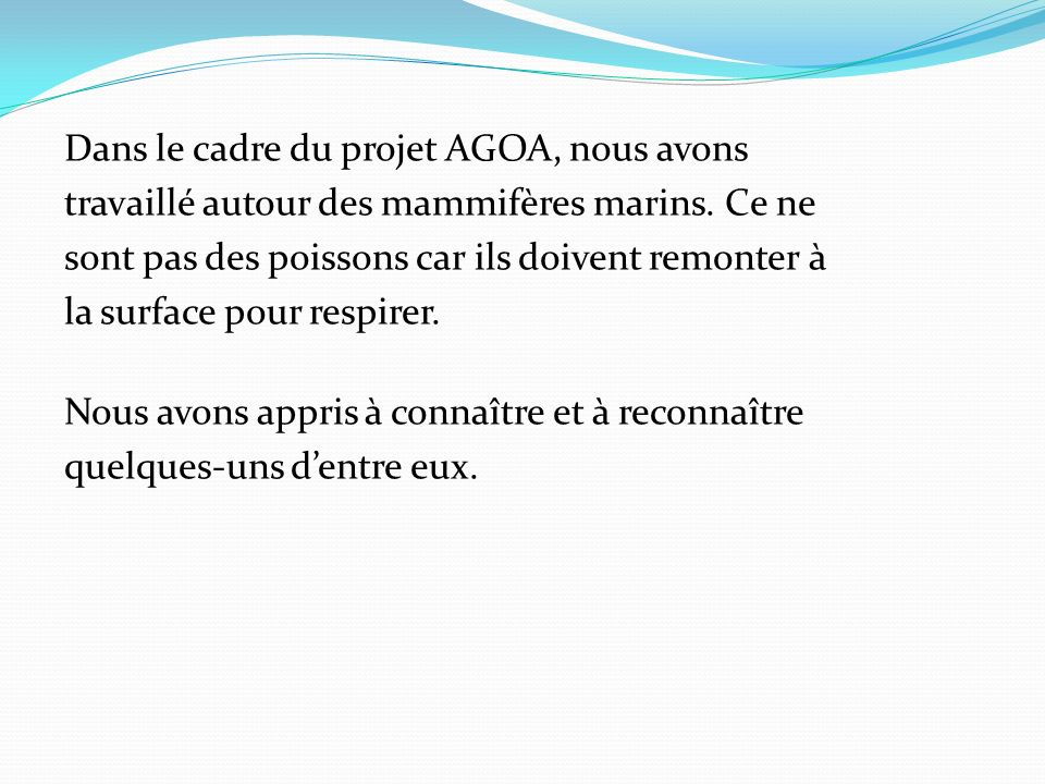 Dans le cadre du projet AGOA, nous avons travaillé autour des mammifères marins.