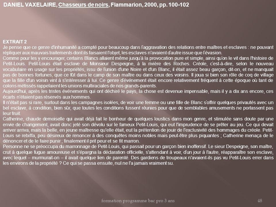 DANIEL VAXELAIRE, Chasseurs de noirs, Flammarion, 2000, pp. 100-102