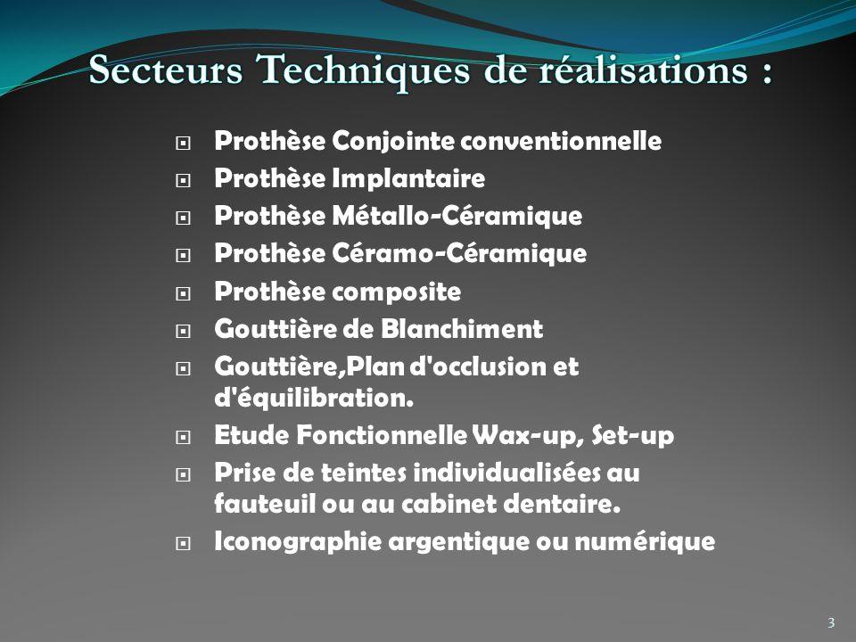 Secteurs Techniques de réalisations :