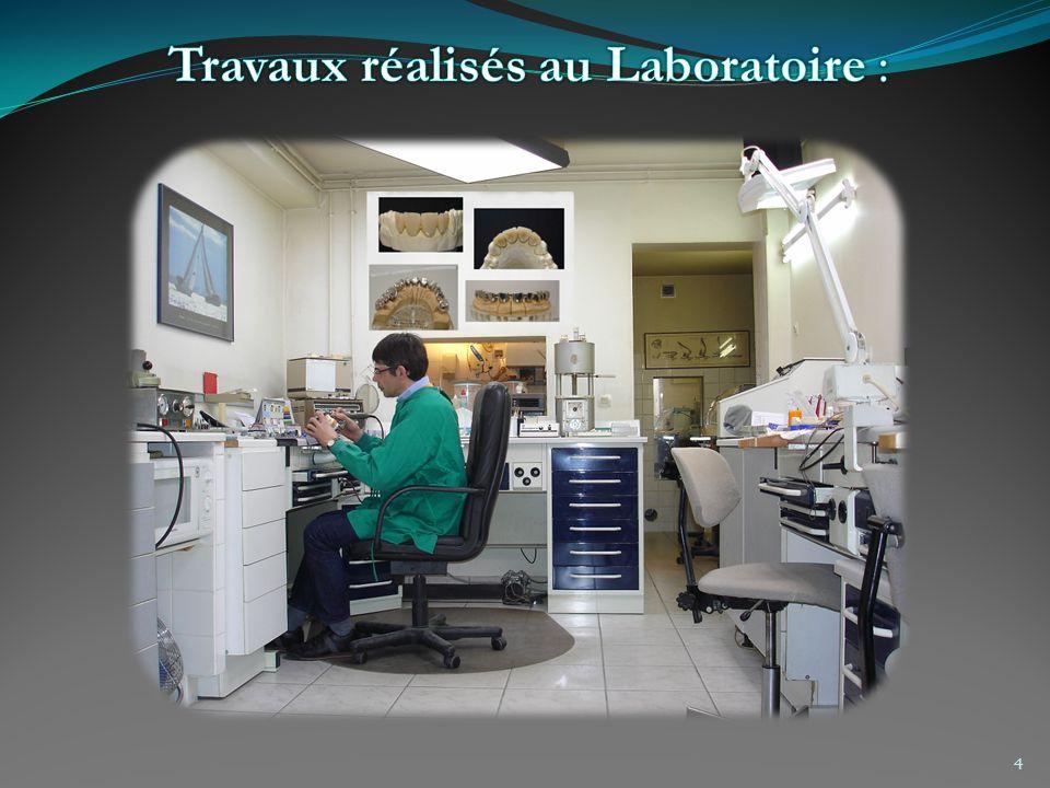 Travaux réalisés au Laboratoire :