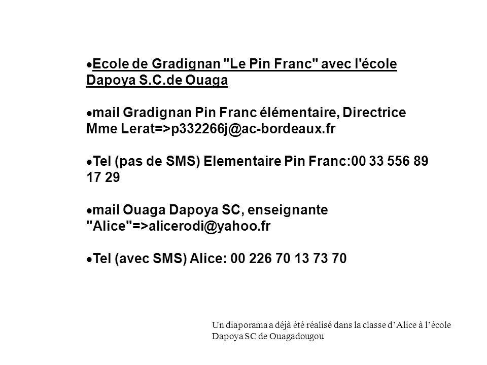 Ecole de Gradignan Le Pin Franc avec l école Dapoya S.C.de Ouaga