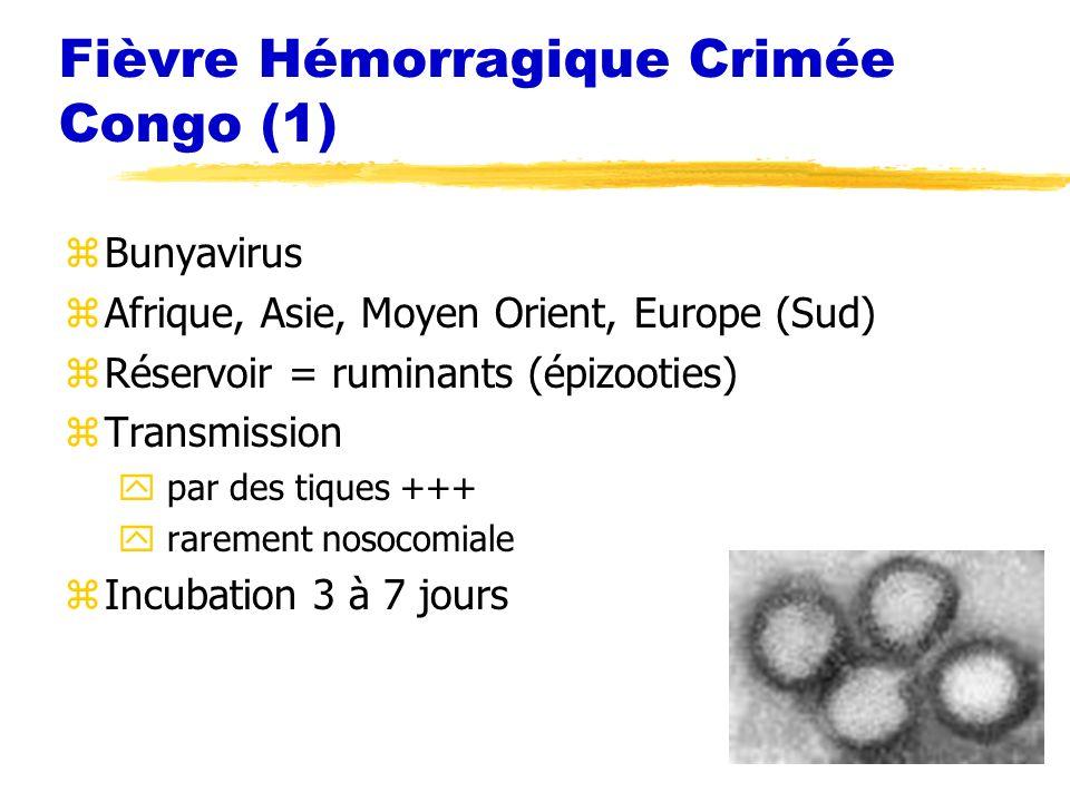 Fièvre Hémorragique Crimée Congo (1)