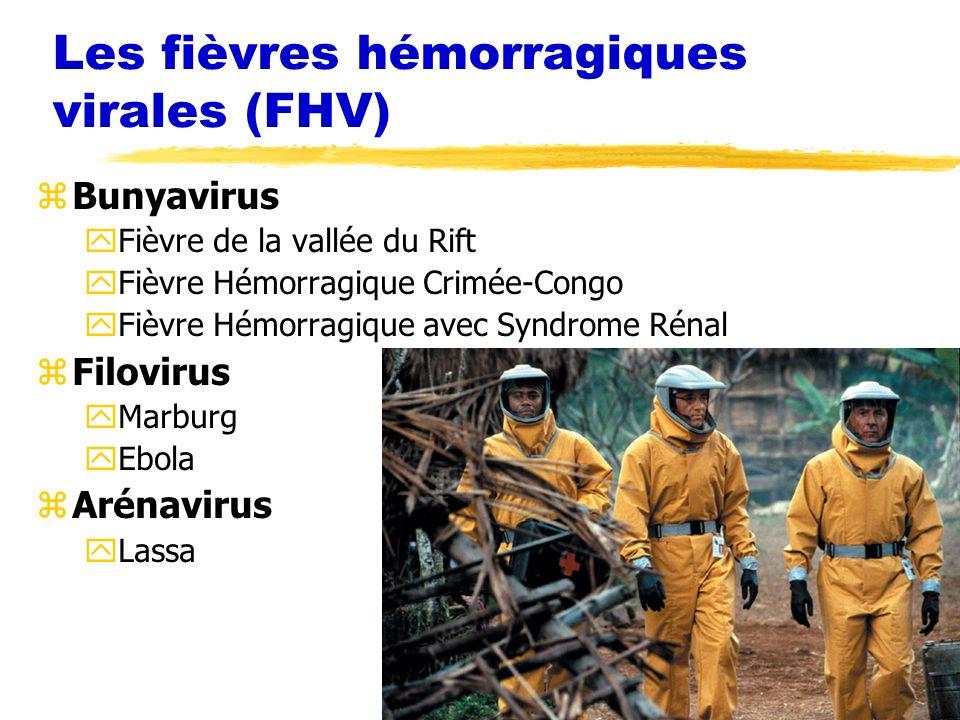 Les fièvres hémorragiques virales (FHV)