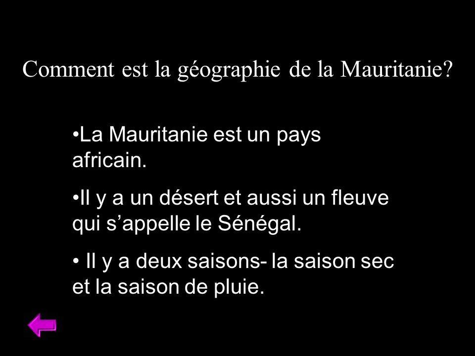 Comment est la géographie de la Mauritanie