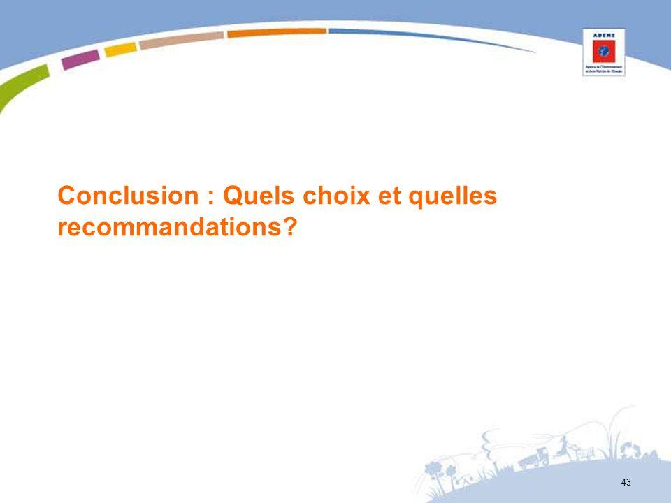 Conclusion : Quels choix et quelles recommandations