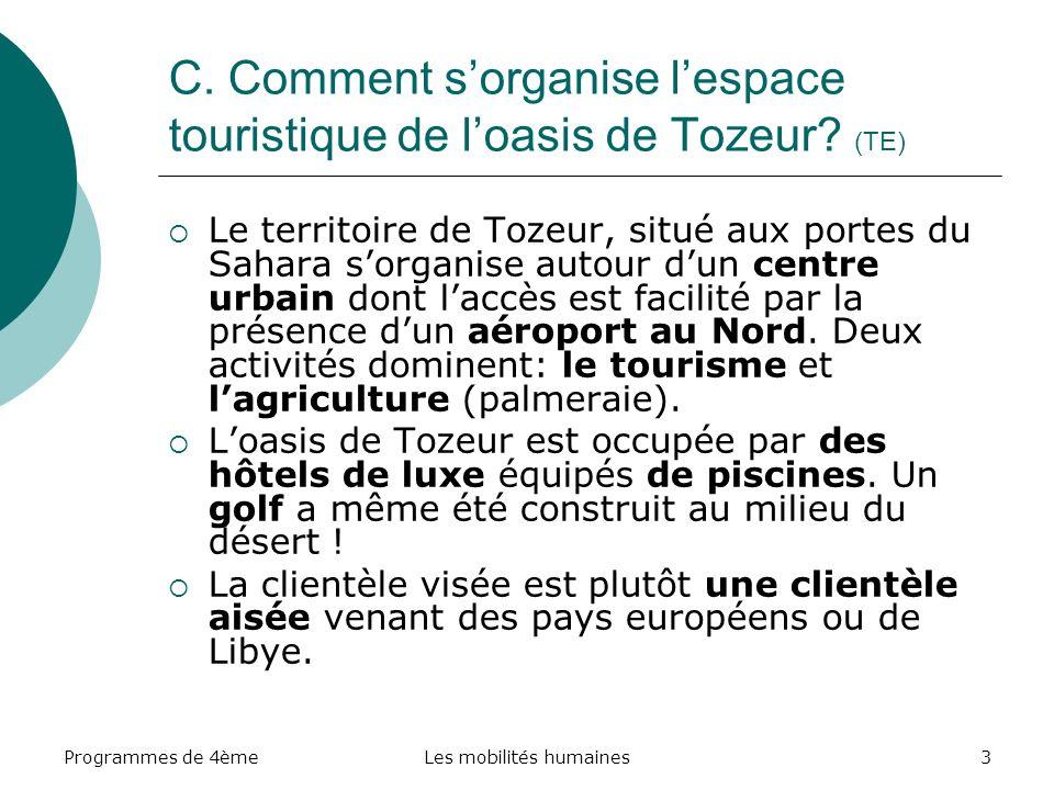 C. Comment s'organise l'espace touristique de l'oasis de Tozeur (TE)