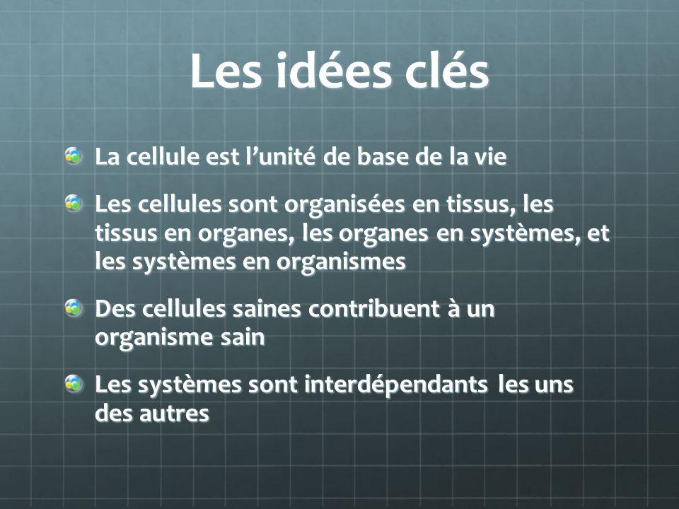 Les idées clés La cellule est l'unité de base de la vie