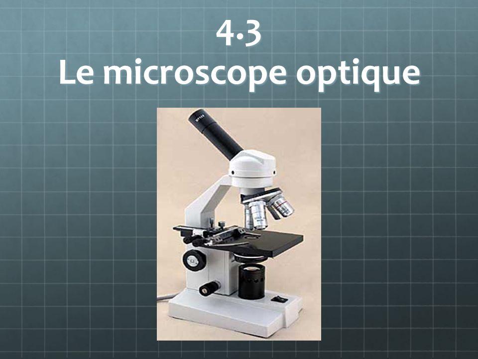4.3 Le microscope optique