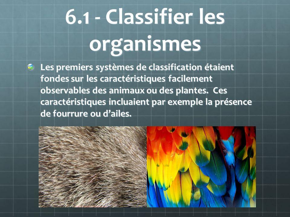 6.1 - Classifier les organismes