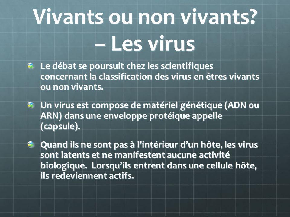 Vivants ou non vivants – Les virus