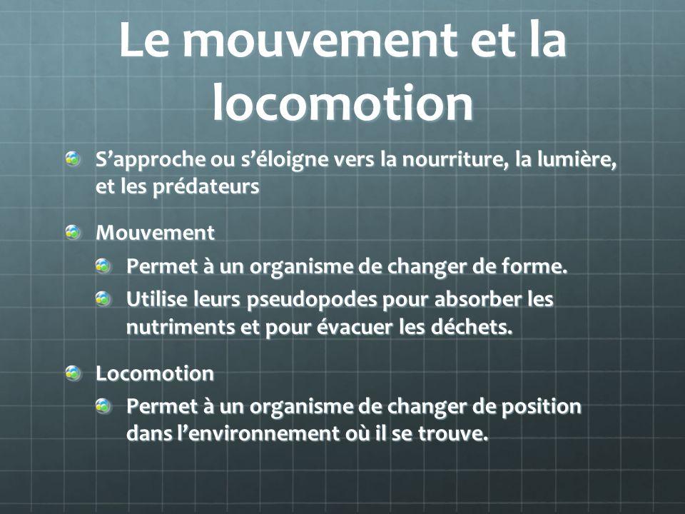 Le mouvement et la locomotion