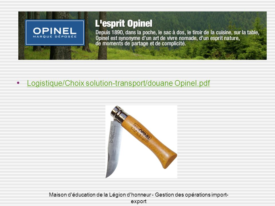Logistique/Choix solution-transport/douane Opinel.pdf