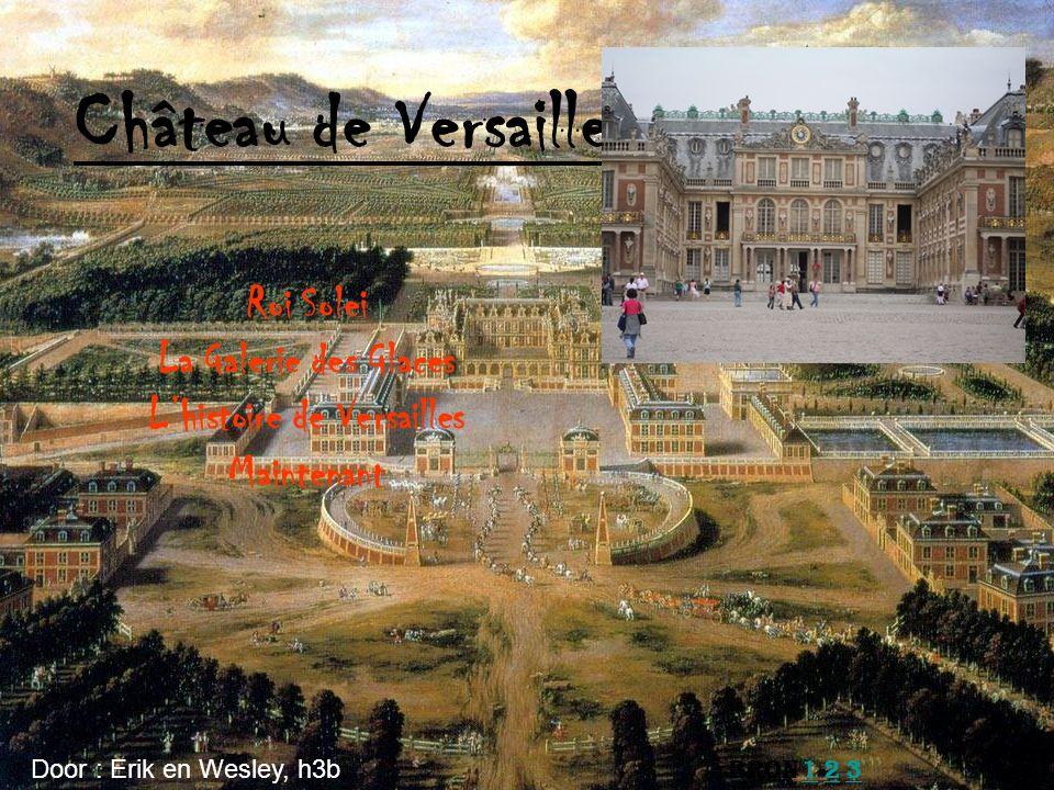 Roi Solei La Galerie des Glaces L'histoire de Versailles Maintenant