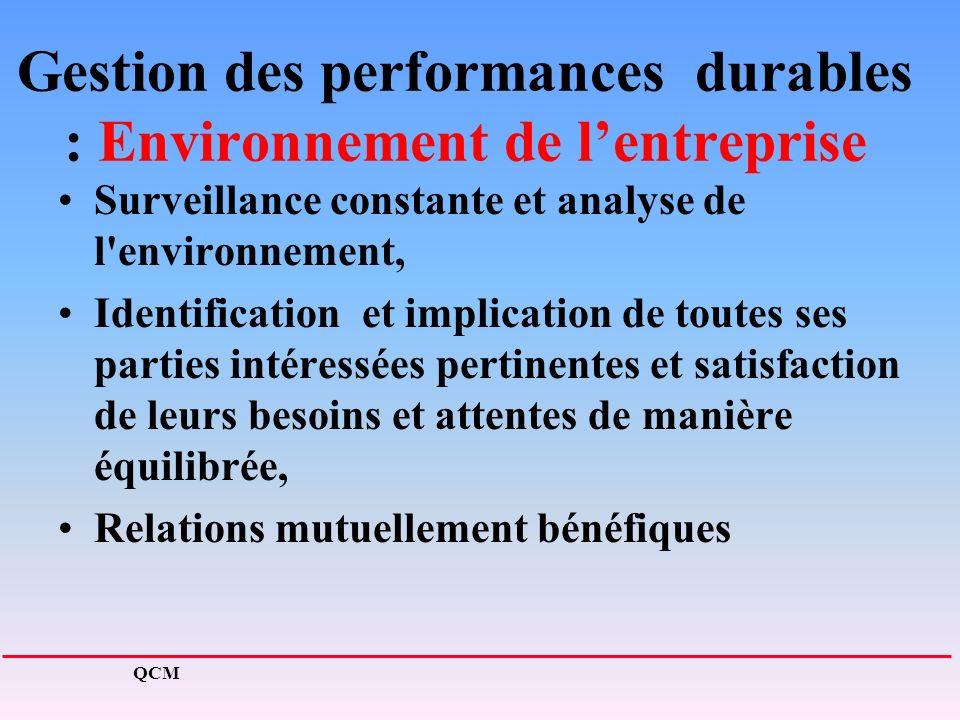 Gestion des performances durables : Environnement de l'entreprise
