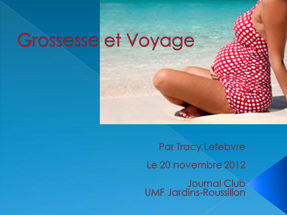 Grossesse et Voyage Par Tracy Lefebvre Le 20 novembre 2012