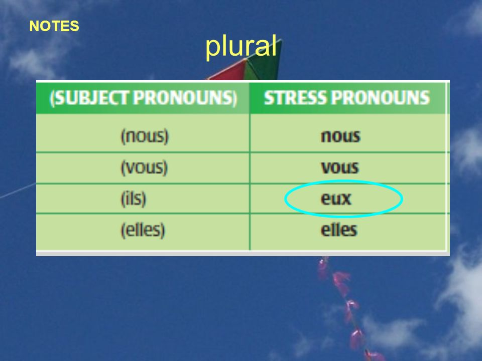 NOTES plural