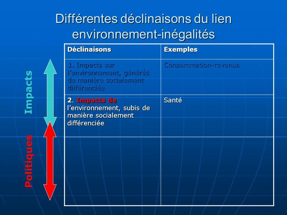 Différentes déclinaisons du lien environnement-inégalités