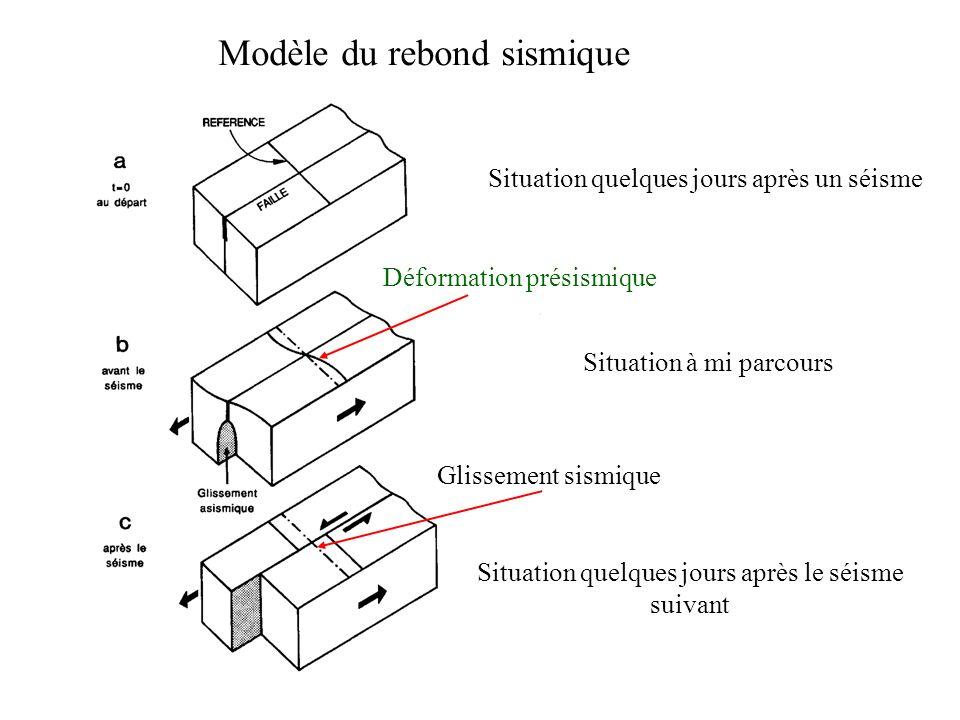 Modèle du rebond sismique