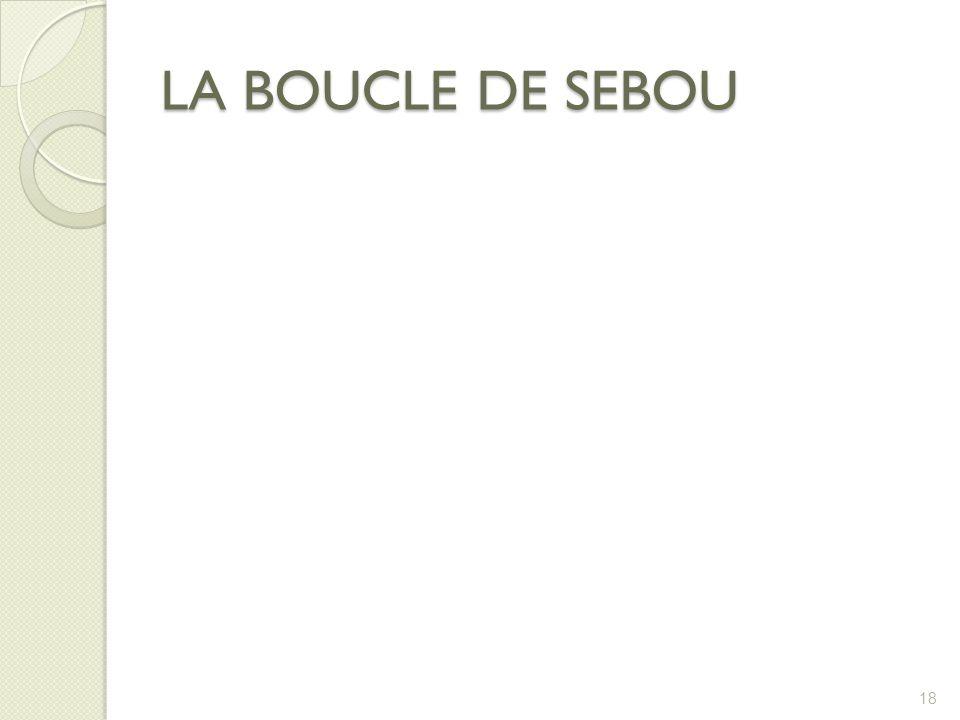 LA BOUCLE DE SEBOU