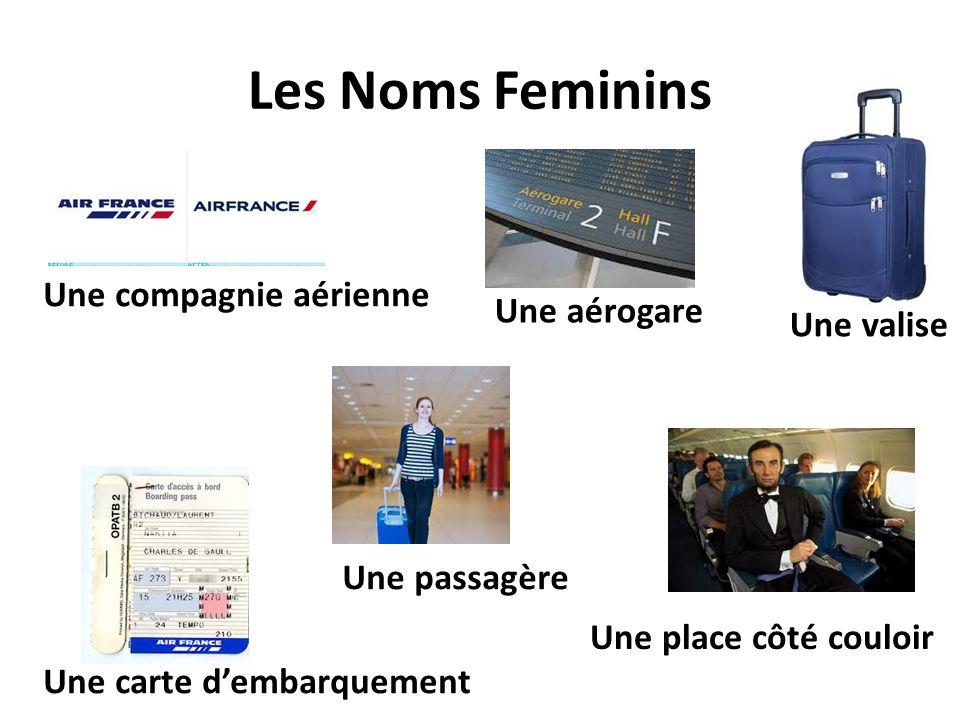 Les Noms Feminins Une compagnie aérienne Une aérogare Une valise