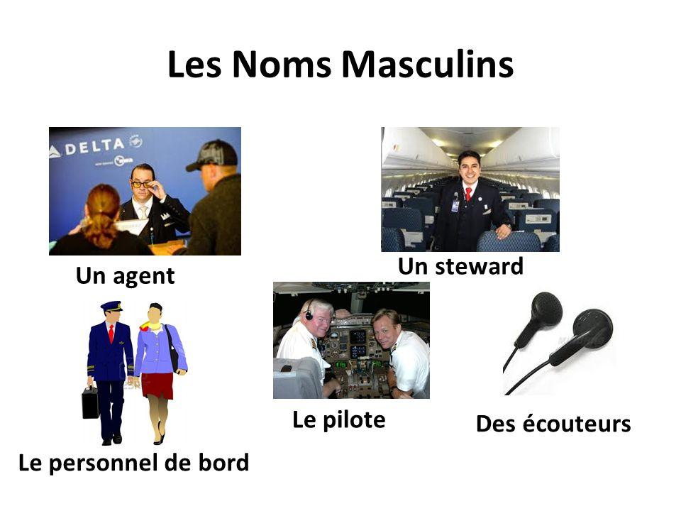 Les Noms Masculins Un steward Un agent Le pilote Des écouteurs