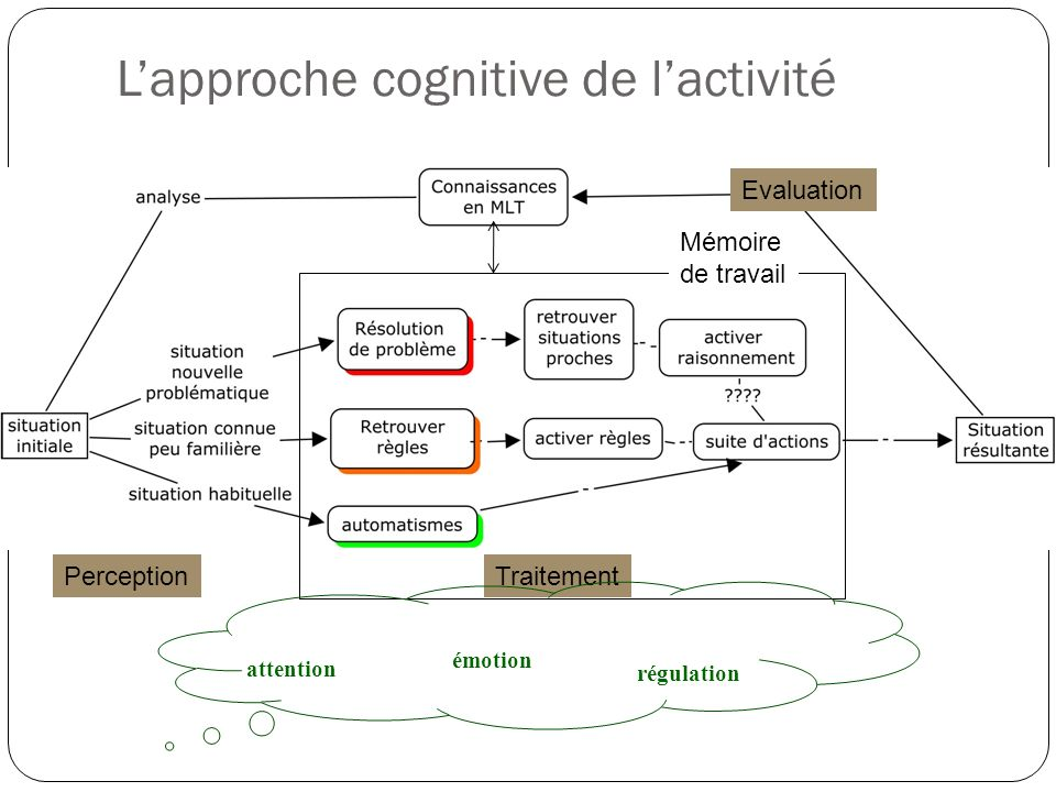L'approche cognitive de l'activité