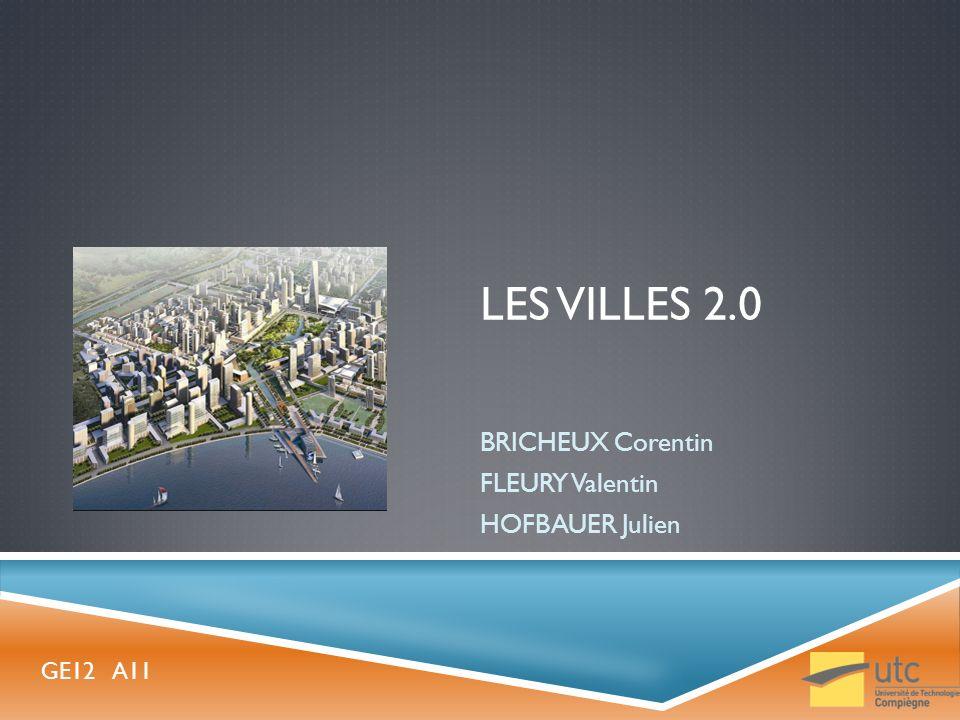 BRICHEUX Corentin FLEURY Valentin HOFBAUER Julien