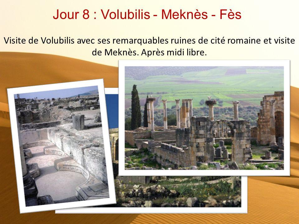 Jour 8 : Volubilis - Meknès - Fès