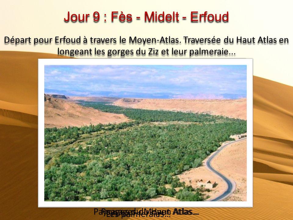 Jour 9 : Fès - Midelt - Erfoud