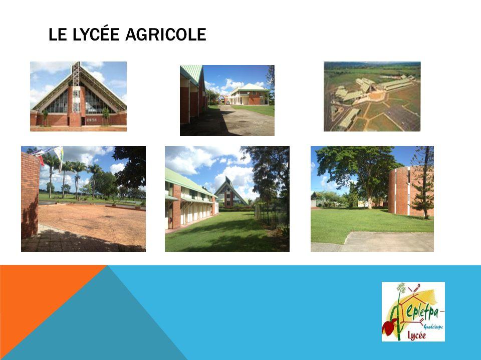 Le Lycée Agricole