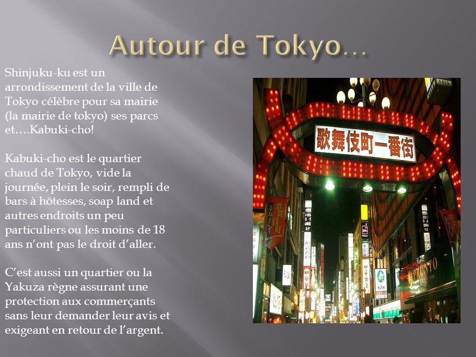 Autour de Tokyo… Shinjuku-ku est un arrondissement de la ville de Tokyo célèbre pour sa mairie (la mairie de tokyo) ses parcs et….Kabuki-cho!