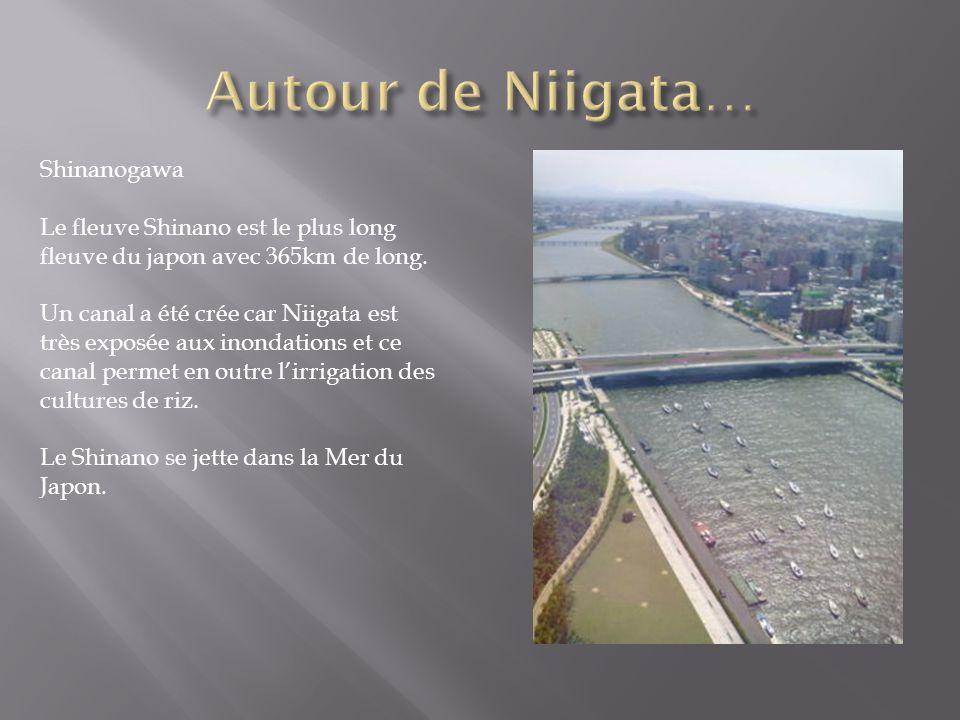 Autour de Niigata… Shinanogawa