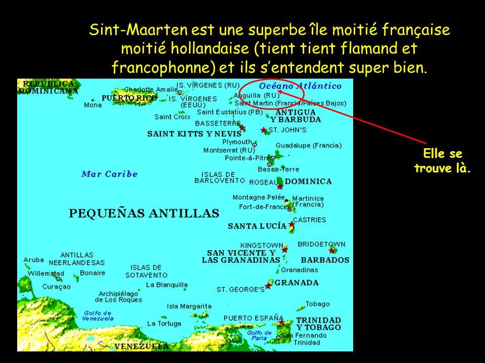 Sint-Maarten est une superbe île moitié française moitié hollandaise (tient tient flamand et francophonne) et ils s'entendent super bien.