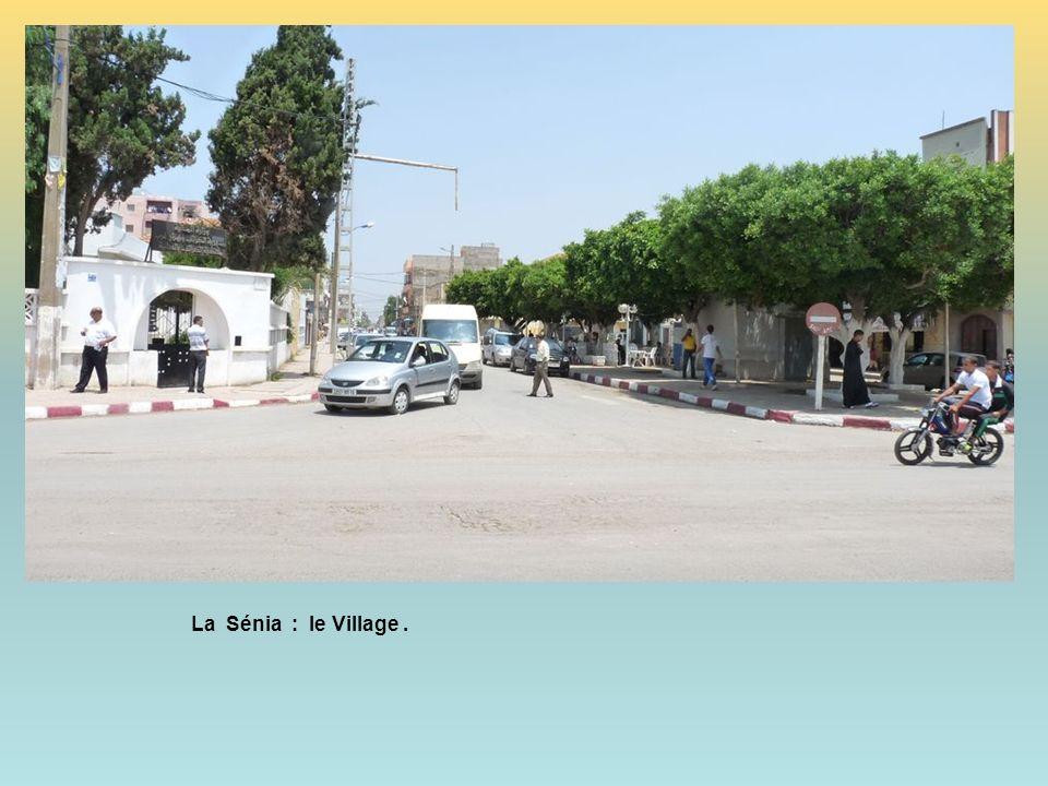 La Sénia : le Village .